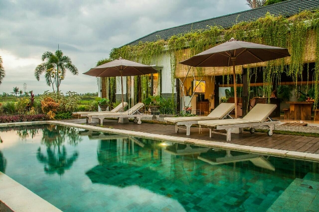 Turun Harga !!! Buruan sebelum Naik lagi !!!Tropical Villa With Beautiful Rice Field View, Kaba kaba, Tabanan