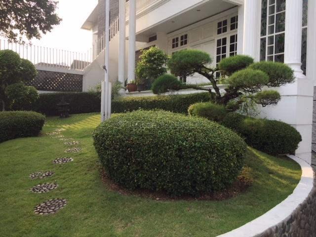 Beautiful white house in Pondok Indah with big pool and garden, Pondok Indah, Jakarta Selatan