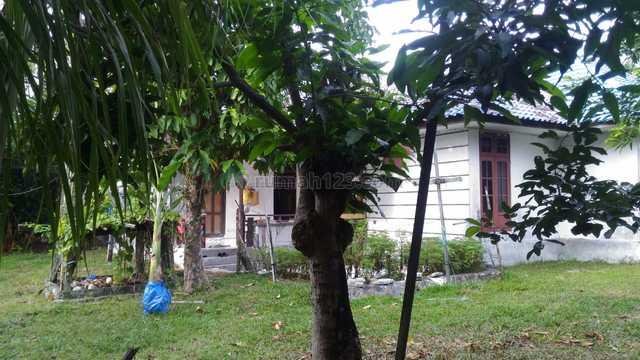 Rumah dengan halaman luas di Palangkaraya Kalteng, Pahandut, Palangkaraya