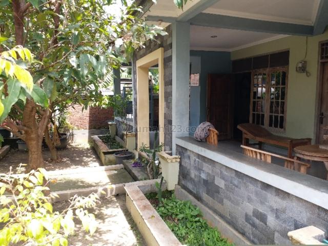 TURUN HARGA ( BU ) - Rumah Bagus 294m2 Plus Kebun Buah, Nguter, Sukoharjo