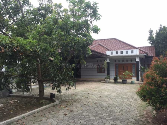 Rumah Bagus TANAH BESAR Halaman Luas, SHM, MURAH, Jagakarsa, Jakarta Selatan