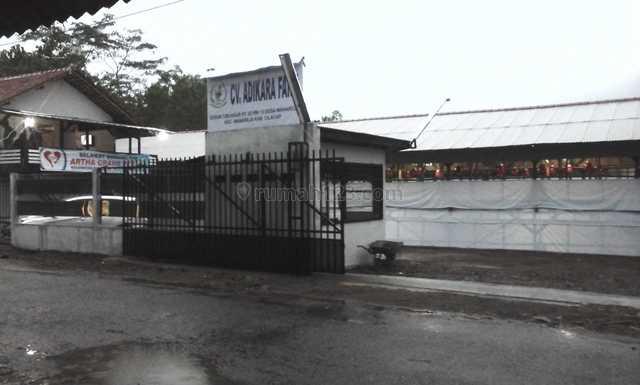 Dijual Peternakan Ayam Broiler Kandang Siap Pakai di Cilacap, Wanareja, Cilacap