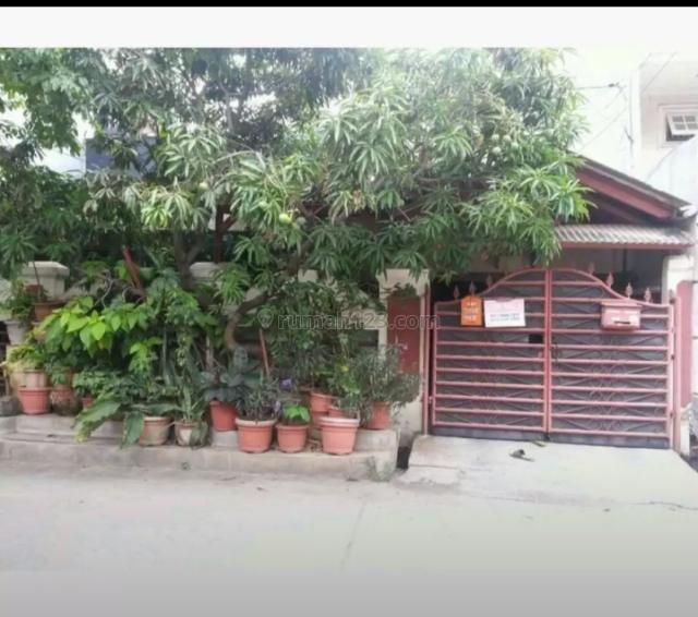 Rumah Tinggal Hitung Tanah di Pluit Barat Jakarta Utara, Pluit, Jakarta Utara