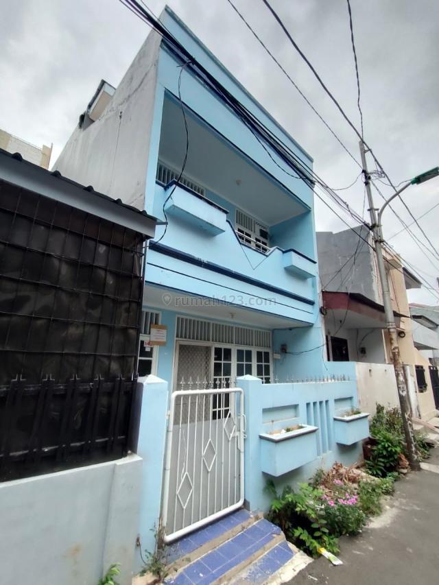 SSeD 332 : Rumah 3 lt full 5x11 dlm gang sdkt NO CARPORT di Tanjung Duren, Tanjung Duren, Jakarta Barat