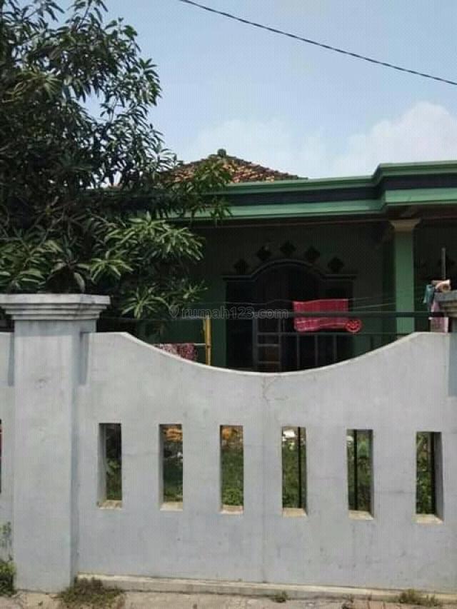 Hunian nyaman luas dan murah di balaraja, Balaraja, Tangerang