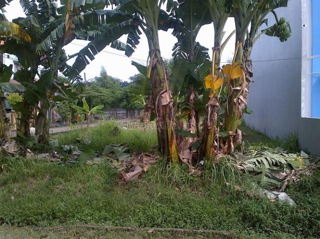 Tanah Villa Ja Setia Bekasi, Jaka Setia, Bekasi