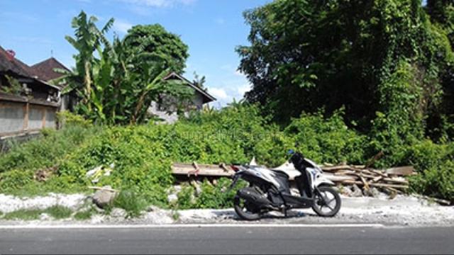 BEUTIFUL LAND, Canggu, Badung