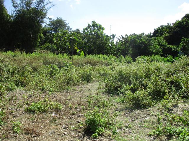Tanah / Land 300m2 at Ungasan, Bali, Jimbaran, Badung