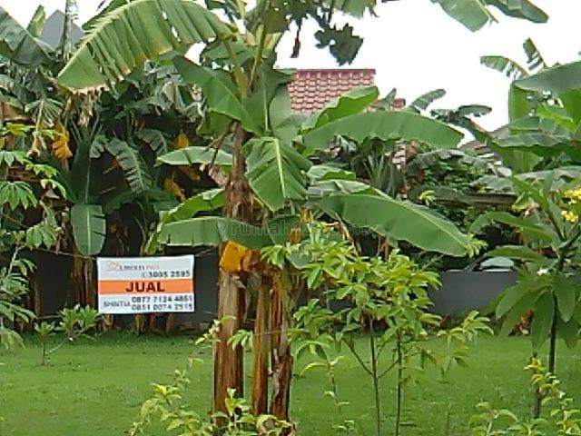 dpt dibangun rmh minimalis, Alam Sutera, Tangerang
