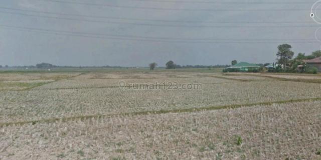 Tanah Perumahan di Kalimalang Bekasi, Kalimalang, Bekasi