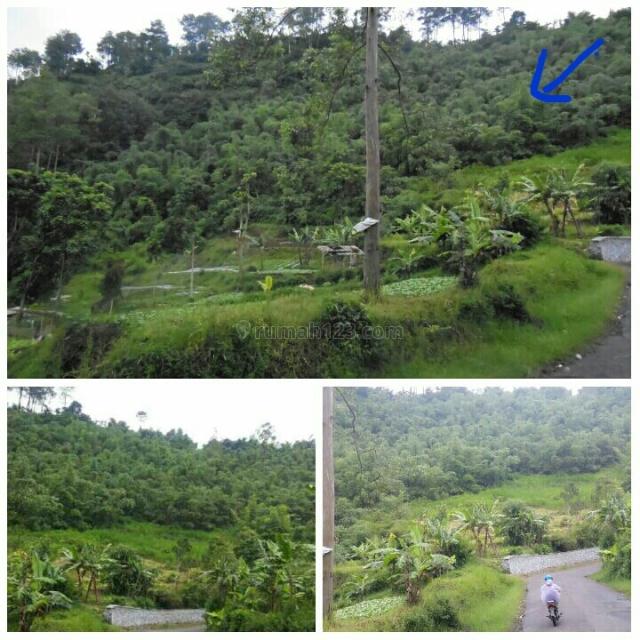 Tanah Maribaya dekat burgundy cocok untuk cafe, resto, villa, area wisata, Lembang, Bandung