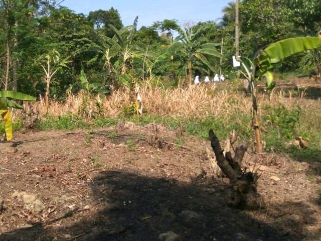 Tanah Strategis Kebagusan Jaksel, Kebagusan, Jakarta Selatan