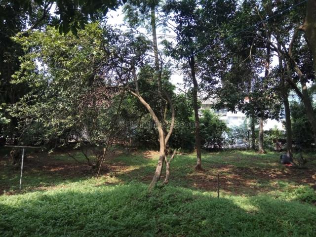 Tanah LUAS di dalam KOMPLEKS, Pondok Labu, Jakarta Selatan, Pondok Labu, Jakarta Selatan