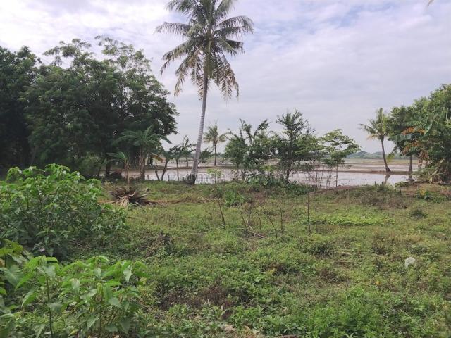 [81CDA6] Tanah Kavling Siap Bangun 2246m2 - Sukabudi, Sukawangi, Bekasi, Sukawangi, Bekasi