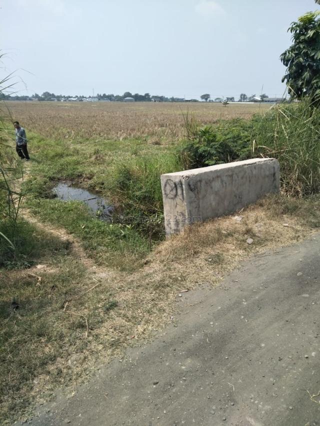 Tanah di Sukaringin Bekasi 1,3 HA Sertifikat SHM, Sukawangi, Bekasi