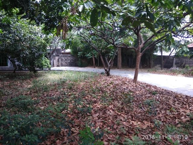 hanya beli tanahnya, gratis rumah cantik 1,5 lantai seluas 450 m2, kramat jati, jakarta timur