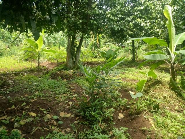 tanah di cibiru wetan bandung, Cibiru, Bandung