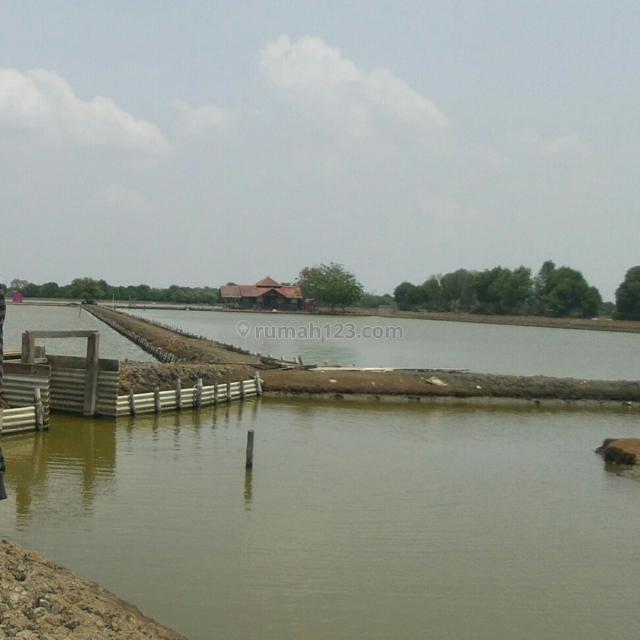 Empang muara gembong bekasi #Komalia 19 PO, Bekasi Barat, Bekasi