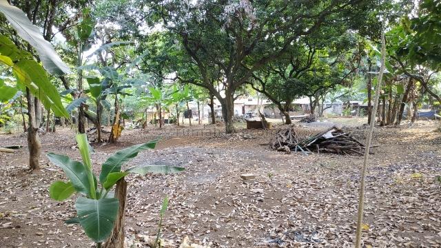 Tanah Murah Cocok Cluster Dekat Tol Andara Selangkah Jakarta, Pondok Labu, Jakarta Selatan