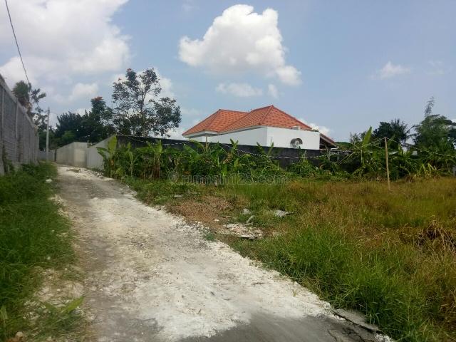 Tanah:1000m2 super murah siap Bangun Di uma Buluh canggu Badung Bali, Canggu, Badung