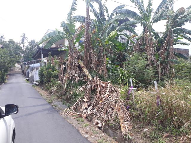 tanah kosong, Malalayang, Manado