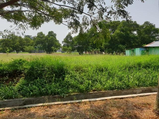 cluster HARMONY(GOLFISLAND) uk 12x20 luas 240meter harga 21jt/meter nepi, Pantai Indah Kapuk, Jakarta Utara