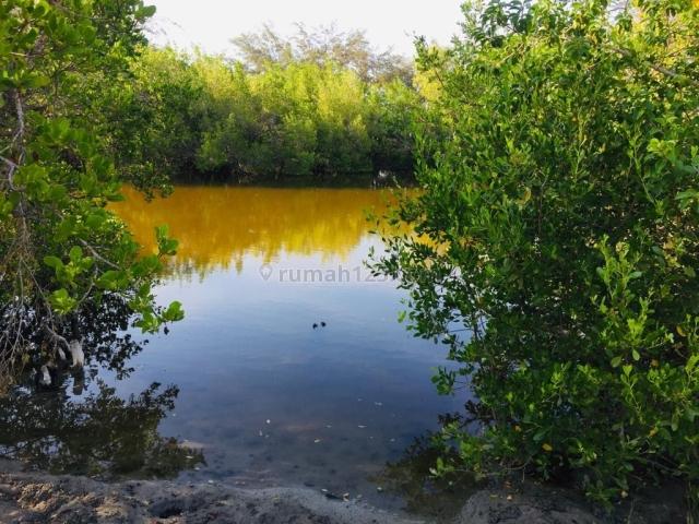 Tanah Pinggir Pantai Palakahembi Bersebelahan Dengan Danau, Pandawai, Sumba Timur