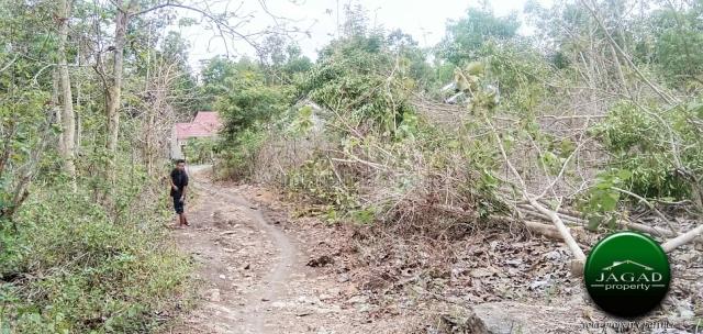 Tanah area Perumahan di Pajangan ( AR 225 ), Pajangan, Bantul