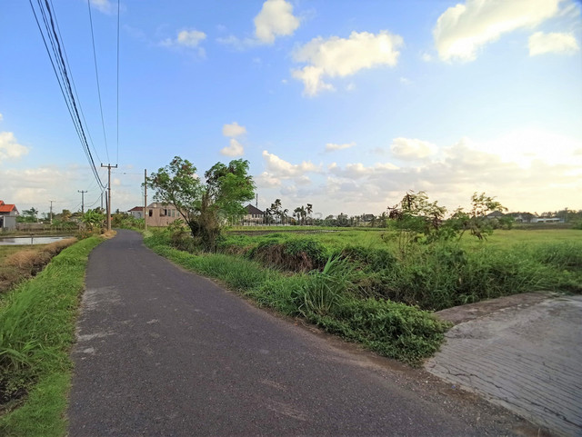 Freehold Land Only 400 Meters From The Beach With Ocean And Paddys View, Canggu, Badung