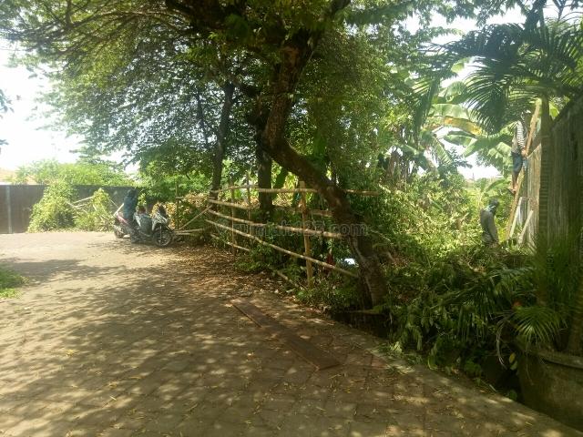 Tanah:864m2 super muraj siap Bangun Di Gang jalak jln semat pantai Berawa canggu Badung Bali, Canggu, Badung