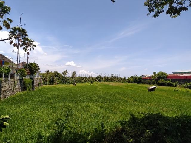 Tanah 2 Ha Jalan Utama Sempidi, Sempidi, Badung
