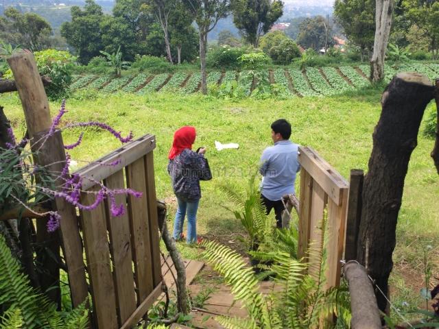 Tanah murah di bandung barat 1 jutaan dkt borma cimahi dan tol padalarang, Ngamprah, Bandung