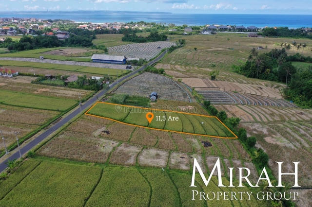 11 Are Freehold Land in Pererenan Near the Beach, Pererenan, Badung