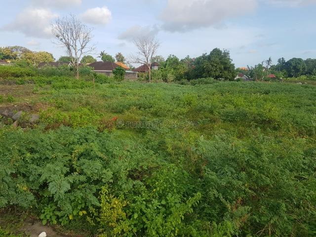 Freehold Land Umalas Kerobokan Area Very Close to Batu Belig and Petitenget Only 7 Minutes Away to the Beach, Kerobokan Kelod, Badung