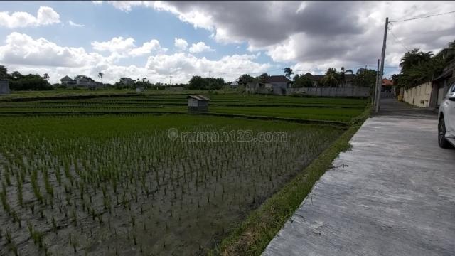 Freehold Land Bussines Opportunity in Kayu Tulang Canggu, Canggu, Badung