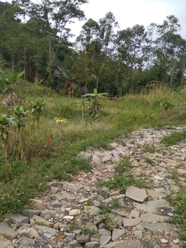 Tanah untuk villa dan kebun, Sentul, Bogor