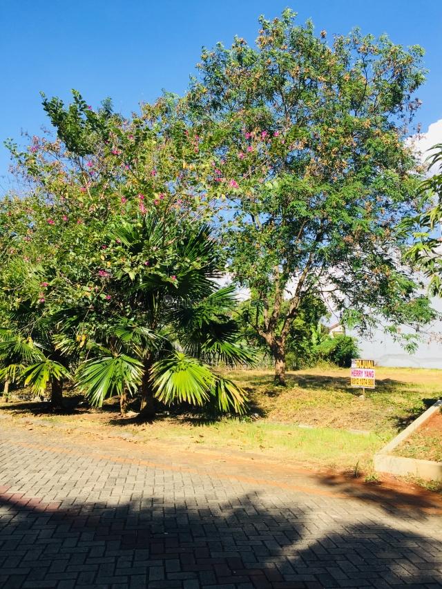 Kavling Tanah Bahtera Permai PIK Pantai Indah Kapuk (741m), Pantai Indah Kapuk, Jakarta Utara