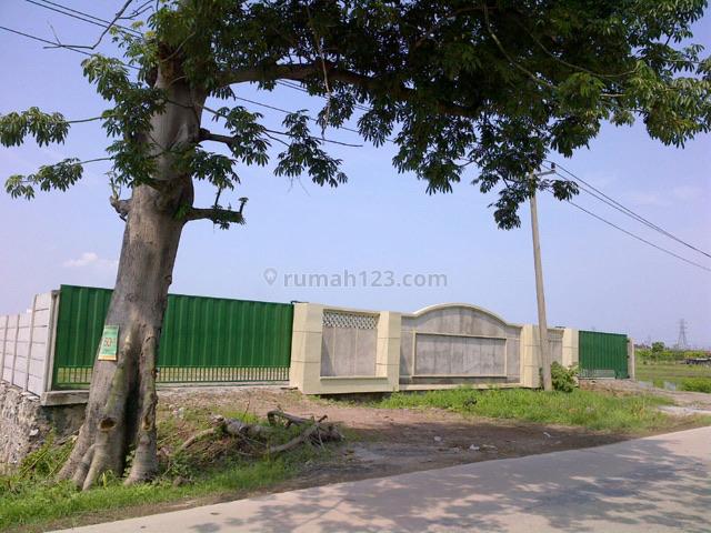 Tanah di Sayung Demak, Sayung, Semarang