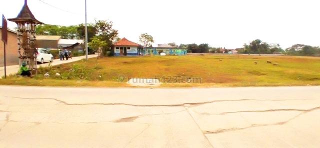 Tanah 2 Ha Cantik Mantap Beli Langsung Untung di Rengas Bandung Lokasi Ramai, Cikarang, Bekasi