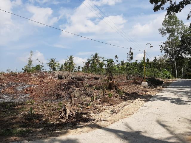 Tanah Murah Sedayu 700 Ribu Legalitas SHM Dekat Jalan Utama, Sedayu, Bantul