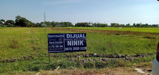 Tanah pekarangan luas cocok untuk Perumahan,  lokasi strategis, Solo Baru, Solo