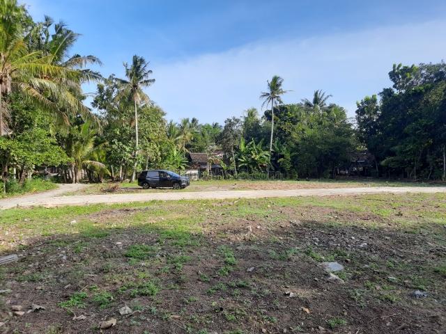 Tanah MUrah Selatan Jl. Raya Wates-Purworejo Dekat Bandara YIA :SHMP, Wates, Kulon Progo