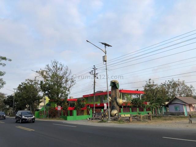 Diskon 25%, Tanah Perumahan 800 m JL Nasional Kulon Progo, Wates, Wates, Kulon Progo