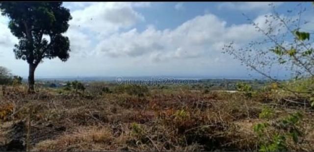 Tanah murah di Nusa Dua hanya 15 min to Mulia Hotel, St.Regis, Grand Hyatt, Diapit 2 lapangan Golf, harga 15M, Nusa Dua, Badung