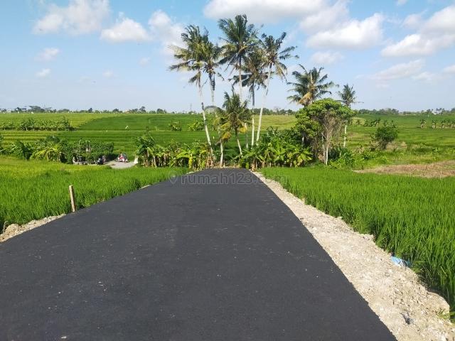 Tanah kavling di pererenan, Pererenan, Badung