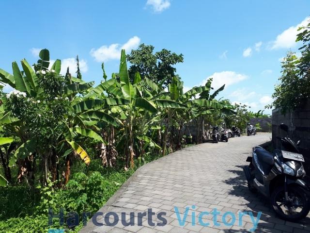 Tanah Murah area Padonan Canggu, Canggu, Badung