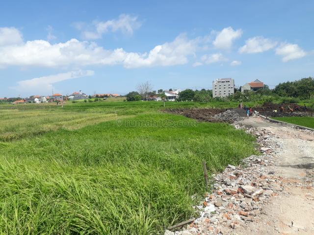 Tanah kavling Kayu tulang Canggu, Canggu, Badung