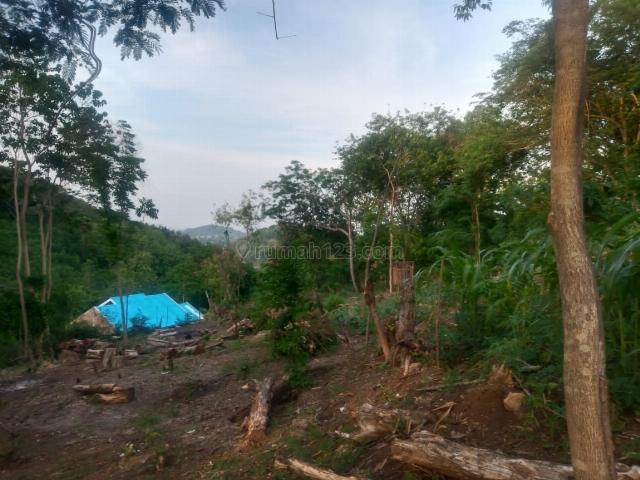 Tanah 1.050 m2 berada di samping hotel/resort di labuan bajo, 789 juta. Cocok untuk villa pribadi, Komodo, Manggarai Barat, Labuan Bajo, Manggarai Barat