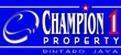 Champion 1 Property Bintaro Jaya