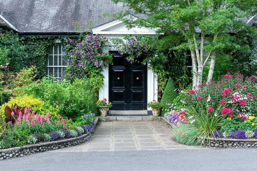 11 Tanaman Di Sekitar Rumah Taman Jadi Lebih Indah Dan Punya Manfaat Rumah123 Com